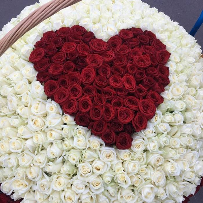 501 роза с красным сердцем R927