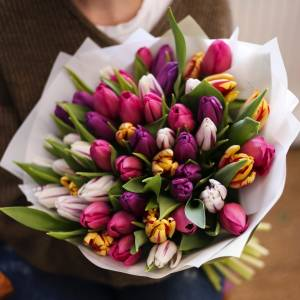 Букет 31 разноцветный тюльпан с оформлением R978