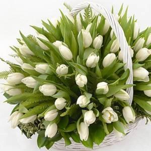 Корзина 51 белый тюльпан R990